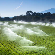 Pentair X-Flow - treatment solutions in the agriculture industry with membranes